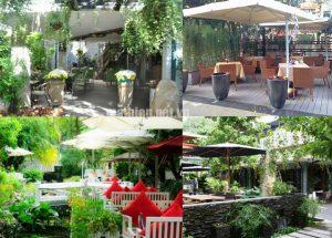 Nhận Thiết kế thi công các mẫu mái che quán cafe sân vườn đẹp, giá rẻ và uy tín nhất hiện nay tại Tphcm